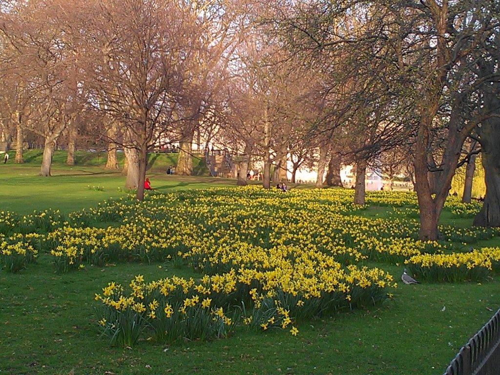 Primavera na Inglaterra