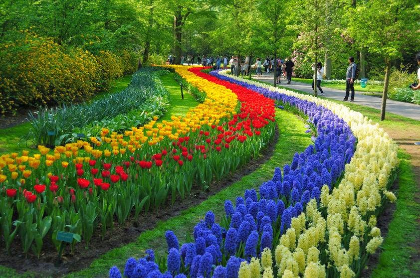 Jardim na Holanda