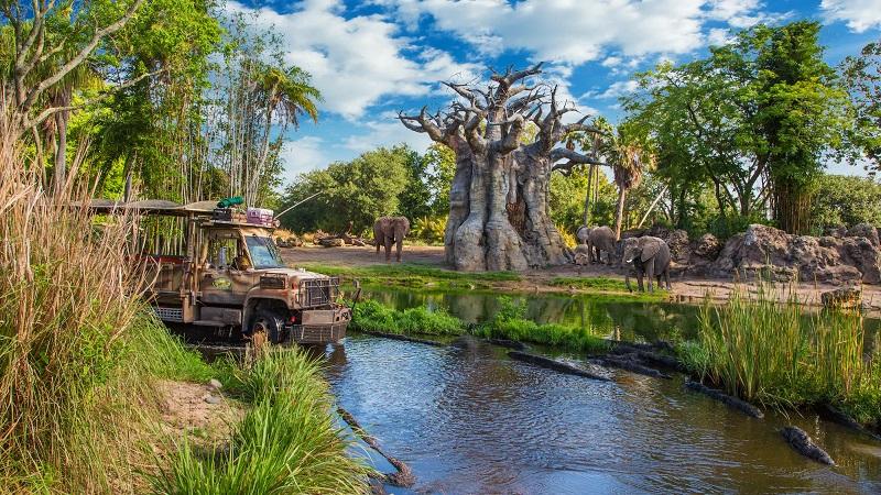 Parque Animal Kingdom