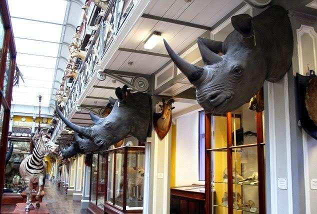 Museu de História Natural em Dublin