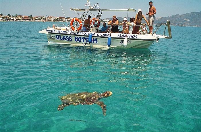 Pessoas em barco vendo tartaruga na Praia de Laganas