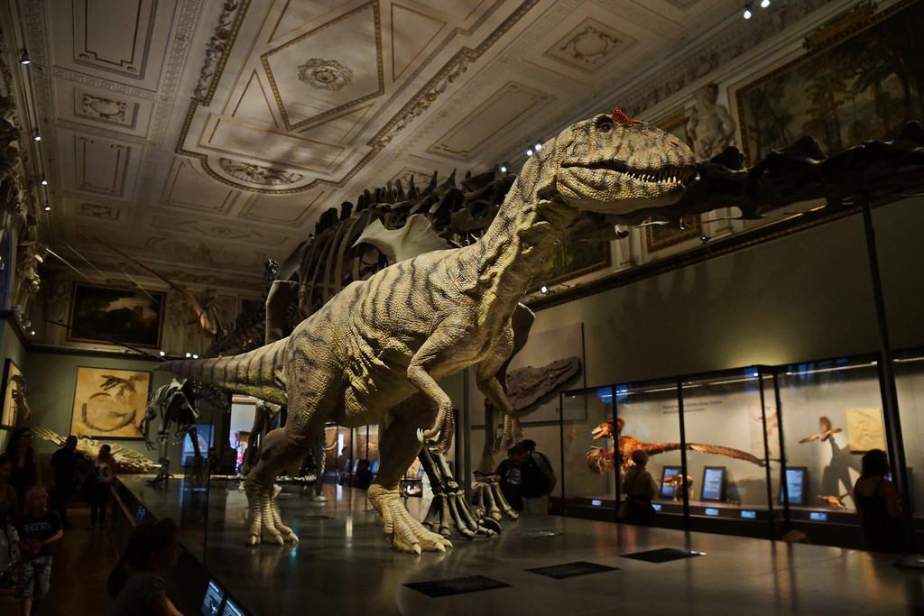 Museu de História Natural em Viena