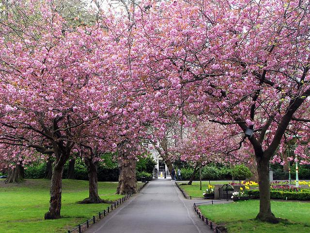 Primavera em Dublin