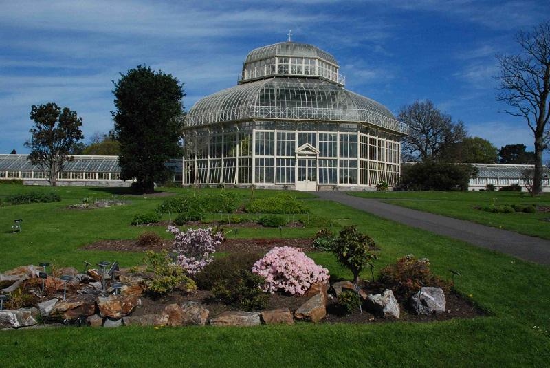 Roteiro de cinco dias em Dublin: Jardim Botânico