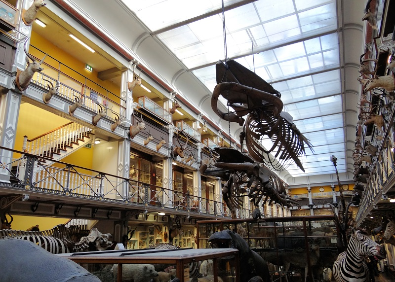 Museus em Dublin na Irlanda