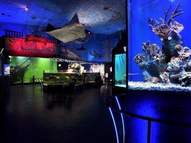 Oceanário de Praga | República Checa