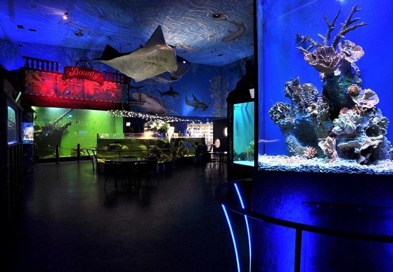 Visita ao Oceanário de Praga